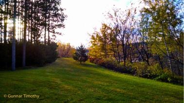 Uncle Gunn's back yard