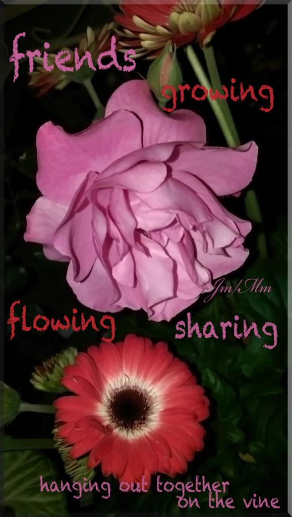 bloomNgrow copy