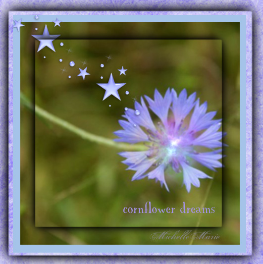 cornflowerdreams