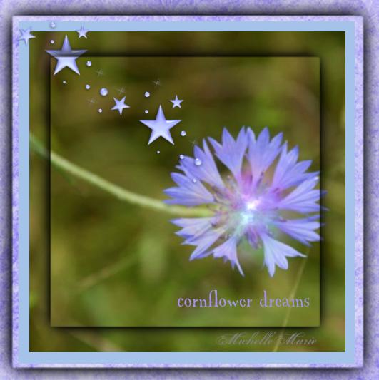 cornflowerdreams