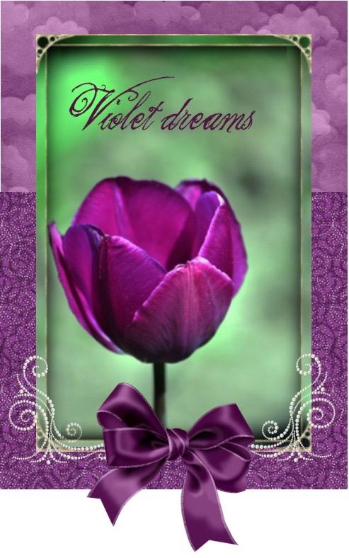 Violetdreams