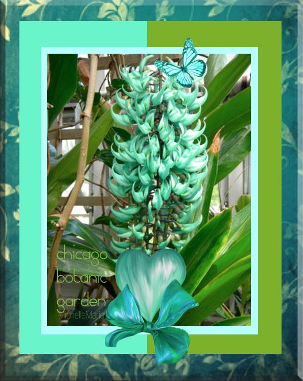 fabulousflowers