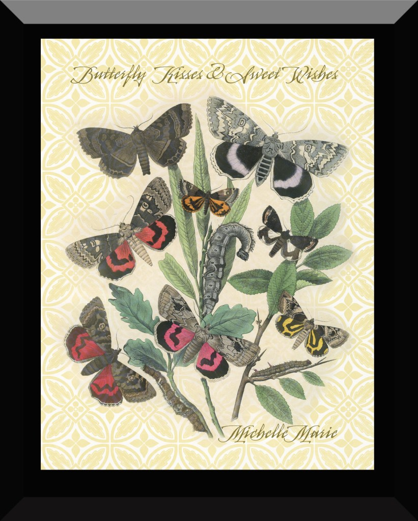 butterflykisseswishes