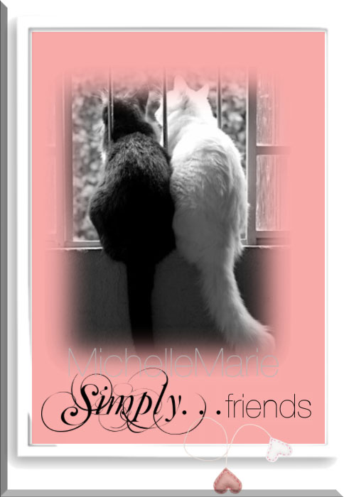 simplyfriends
