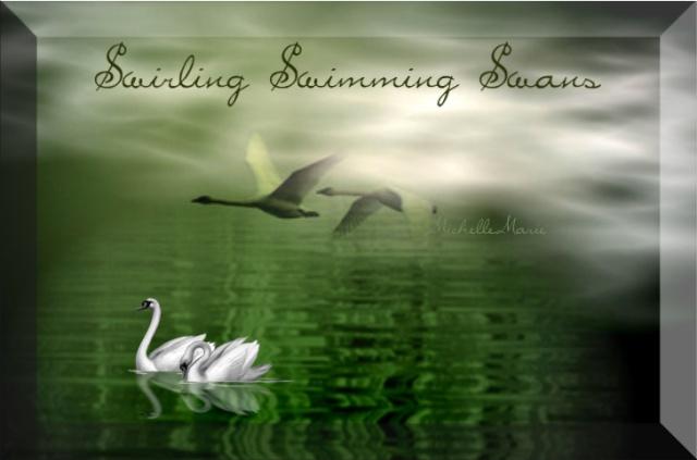 SwirlingSwimmingSwans