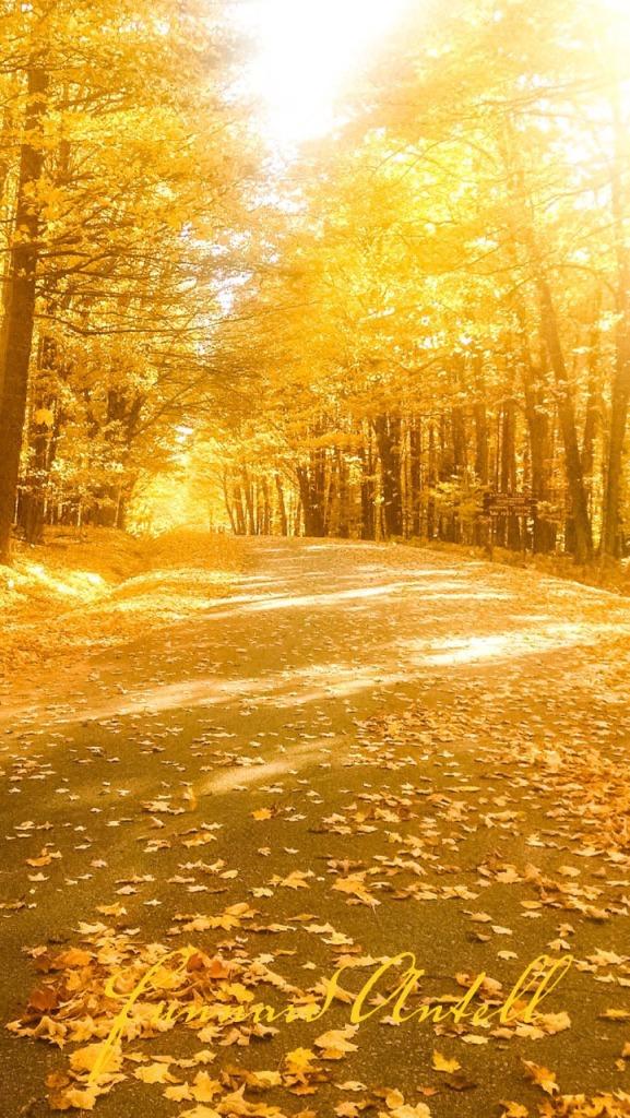 autumninwisconsin