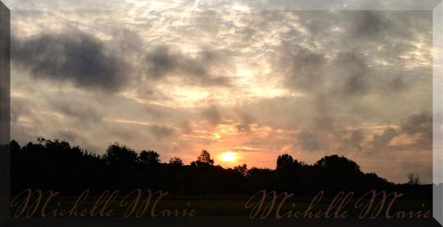 morningsglory