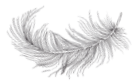 flowingfeather