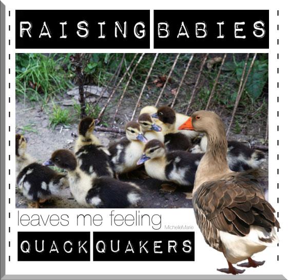 raisingbabies